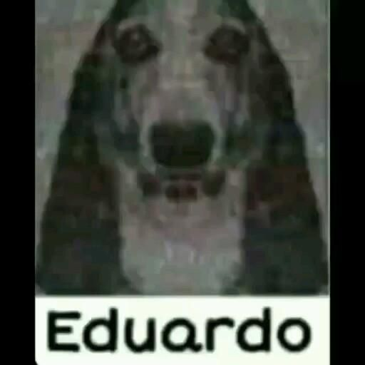 Eduardo é selecionado para jogar stripoker com Fernando Miguel e perde a aposta de mais de 2 bilhões de euros canadenses e arruína  a economia brasileira.