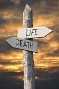 Duarte Pereira novo CEO da Death4Live International